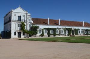 Main House - a bit big?