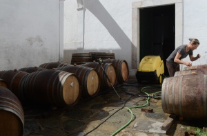 Cleaning the barrels
